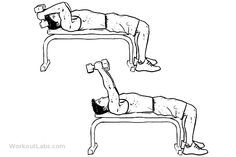 Lying Dumbbell Tricep Extension   Illustrated Exercise guide ...