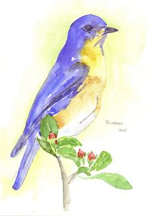 """""""The bluebird carries the sky on his back. Henry David Thoreau, Blue Bird, Sky, Quotes, Painting, Heaven, Quotations, Heavens, Painting Art"""