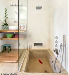 Love the sunken bathtub, but more rounded corners, and maybe lined with pebbles.