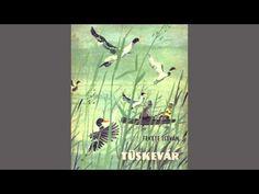 Fekete István - Tüskevár (Hangoskönyv) - I. rész - YouTube