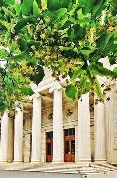 Parfumul florilor de tei la Ateneu ❤️  #DanaStefanescu #PrinBucurestiulMeu Romania, Outdoor Structures, Paintings, Paint, Painting Art, Painting, Painted Canvas, Drawings, Grimm