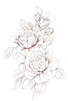 Stock vector of 'beautiful monochrome black and white dahlia… – Tattoo Designs Dahlia Tattoo, Peony Flower Tattoos, Flower Tattoo Drawings, Flower Tattoo Designs, Flower Art, Dahlia Flower, Carnation Flower Tattoo, Rose Drawing Tattoo, Tattoo Roses