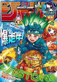 Manga News, Location History, Stone, Twitter, Cover, Magazine, Anime, Rock, Stones