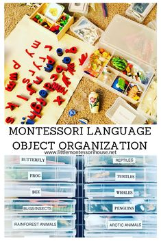 Montessori Language Object Organization - The Little Montessori House Organizing Paperwork, Binder Organization, Montessori Homeschool, Montessori Activities, Bee Life Cycle, Rainforest Animals, Arctic Animals, Learning Spaces, Letter Sounds