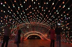 AEPioneer's Light tunnel project, financed by the beautification organization of Tehran Municipality, is created to provide an atmosphere of entertainement as well as a cozy milieu for local citizens by light.