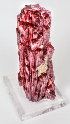 Large Rubellite Crystal. This 10.53 pound single Rubellite Tourmaline crystal is an aggregate of parallel crystals, most individuals of which are individually terminated. This specimen shows over sixty-five terminations measuring from 2 mm to 25 mm. Each termination shows a deep rich red color. This crystal is one of the survivors of the collapsed cranberry pocket where many specimens became material for master gem cutters. This and more rare mineral specimens for sale on CuratorsEye.com