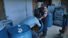 Two-hours northwest of New York City, Andy Brennan and his wife make cider. But this isn't just any cider. Dog Bike Trailer, Biking With Dog, Exotic Places, Alcohol Recipes, The Hard Way, New York Travel, Winter Garden, Foodie Travel, Tatoos