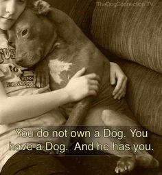 You do not own a dog. You have a dog. And he has you.