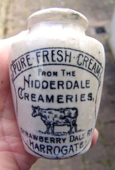 APPEALING 'NIDDERDALE, HARROGATE' YORKSHIRE CREAM POT w HANDLE feat STANDING COW