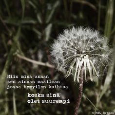 #runo #runoja #suomeksi #runous #runoilija #valokuva #valokuvaus #mietelause #aforismi