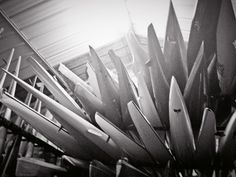 The Kayak Academy Kayak Rack, Boat Design, Kayaks, Cameras, Surfing, Outdoors, Green, Sports, Recipes