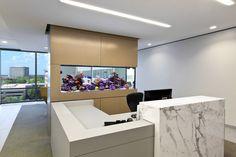 aquarium maison, faux plafond moderne avec spots intégrés et bureau design
