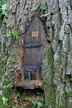 Fairy doors at Furzey Gardens., This bother me if they are dug into the tree. If one can find a knook in a tree and make and fit a little door to fit that would be fine.