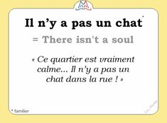 Il n' y pas un chat. This district is very calm. There isn't a soul in the street. Beautiful French Words, Basic French Words, How To Speak French, Learn French, Learn English, French Slang, French Phrases, French Quotes, French Sayings