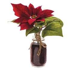 Allstate Velvet Poinsettia & Vase (0.01 CAD) ❤ liked on Polyvore featuring home, home decor, christmas, flowers, red and red home decor