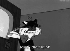Idiot,are we..?