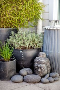 Buddha i Zen outdoor plant corner love the large river rocks