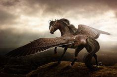 Pegasus treasure self love, feel like flying, set free, Unicorn Illustration, Fantasy Illustration, Fantasy Paintings, Fantasy Art, Fantasy Creatures, Mythical Creatures, Mythological Animals, Fire Horse, Different Art Styles