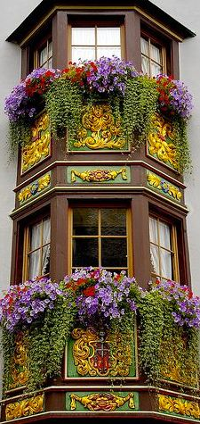 color and architecture and these amazing window boxes in Rottweil, Baden-Wurttemberg, Germany This is what I loved about Europe. The window boxes.