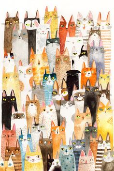 Don't we all need more cats?