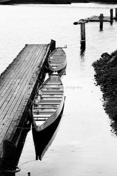 Lake Union Dragon Boats