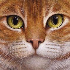 """cat - esquemas de bordado - Elena555 - Autores - Portal """"punto de cruz"""""""
