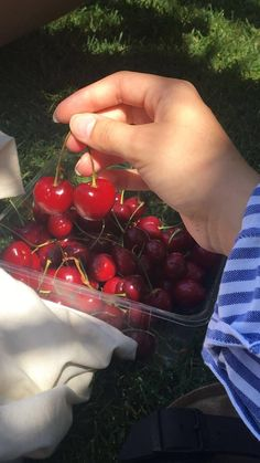 Aesthetic Food, Aesthetic Photo, Aesthetic Pictures, Food N, Good Food, Food And Drink, Photographie Portrait Inspiration, Cravings, Cherry