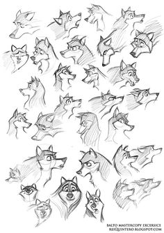 Pin by olivia anderson on drawings zvieratá. Animal Sketches, Animal Drawings, Drawing Sketches, Drawing Animals, Sketching, Character Design Cartoon, Character Design References, Character Sketches, Wolf Character