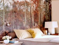 Wall Murals that brings you to the forest before you fall asleep