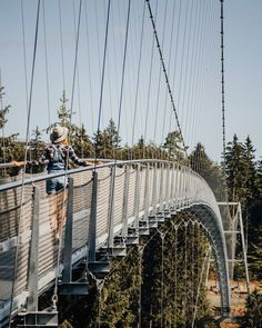 """Crossing the new """"Wildline"""" suspension bridge before it officially opens this weekend. Are you planning on visiting?🌲🌳 {posted by & } Frankfurt, Suspension Bridge, Going On A Trip, Black Forest, Travel List, Van Life, Travel Around, Outdoor Activities, The Good Place"""