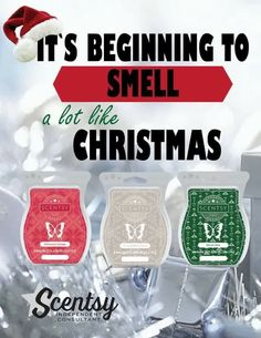 It's beginning to smell a lot like Christmas #scentsy #christmascottage #frostedwhitebirch #winterpine #scentsbykris