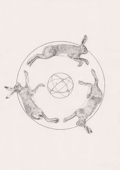 peter carrington 3 Dead Hares and a Sphere Nature Tattoo Sleeve, Nature Tattoos, Sleeve Tattoos, Rabbit Anatomy, Blackwork, Hare Illustration, Historia Natural, Rabbit Tattoos, Tattoo Project