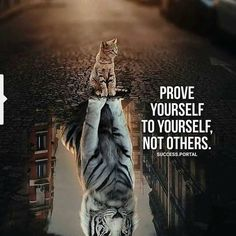 20 Motivational Quotes Brought To You By Big And Powerful Cats - I Can Has Cheezburger? 20 Motivational Quotes Brought To You By Big And Powerful Cats - World's largest collection of cat memes and other animals Tiger Quotes, Lion Quotes, Strong Quotes, Positive Quotes, Powerful Quotes, Famous Quotes, Best Quotes, Encouragement, Daily Quotes