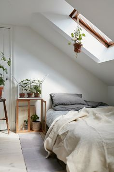 Botanical attic. Attic Bedroom DecorSmall ... & Attic Bedroom Design and Décor Tips | Pinterest | Small attic ...