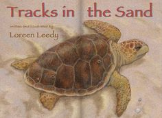 The iBooks edition of Tracks in the Sand, which tells the life cycle story of sea turtles.