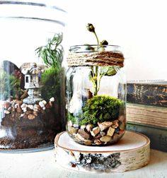 un pot en verre décoré avec de la mousse et des pierres décoratives