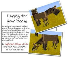 how to find a horse in minecraft survival