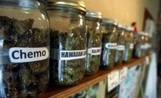 Medical Marijuana Dispensary Rolls Out In Rolling Meadows