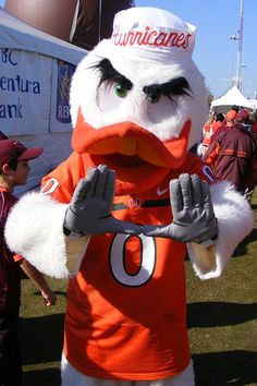 Miami Hurricanes Football Guide is the source for the Miami Hurricanes mascot, Sebastion the Ibis, and the University of Miami traditions. Miami Hurricanes Mascot, University Of Miami Hurricanes, Hurricanes Football, Miami Football, College Football Teams, Sports Teams, Sports Logos, Alabama Football, Football Helmets
