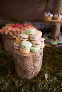 Woodland Baby Shower Baby Shower Party Ideas | Photo 2 of 36 | Catch My Party