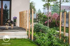 Záhrada so žabkou, Klínec   Mojinterier.sk Landscape Design, Garden Design, Google Images, Outdoor Living, Pergola, Outdoor Structures, Flowers, Plants, Beautiful