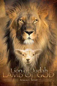 The man became a lamb.....the lion became a man....our soon coming King!