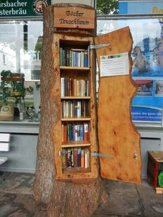 Tree trunk book case