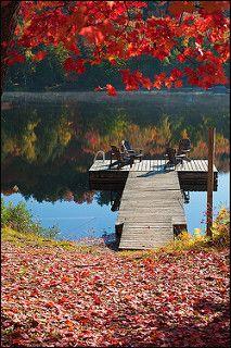 Colors of Fall in Algonquin Park | por IgorLaptev