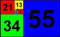 #fibonacc # first 10 terms of fibonacci #55