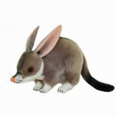 Bilby Australian Marsupial plush toy small - Belinda by Bocchetta Easter Bilby, Toys Australia, Sewing Stuffed Animals, Australian Animals, Cute Plush, Toys Online, Toys Shop, Animals Images, Softies
