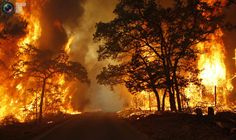 Texas Wild Fires in the summer 2011 at Bastrop State Park Bastrop State Park, Bastrop Texas, Gatlinburg Fire, Gatlinburg Wildfire, Fire Tornado, Wow Photo, California Wildfires, Wild Fire, Images Google