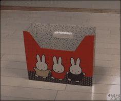 Nice box...