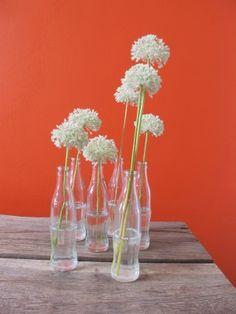 coke bottle vases