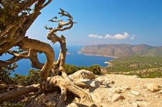 From Monolithos - Rhodes Greece